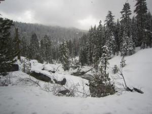 Magical snow scene