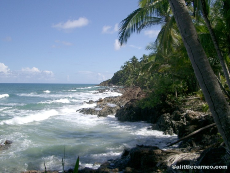 A slice of Brazilian paradise